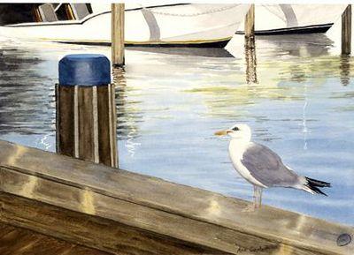 Bird's Eye View - Nantucket Harbor through the eyes of a sea gul.