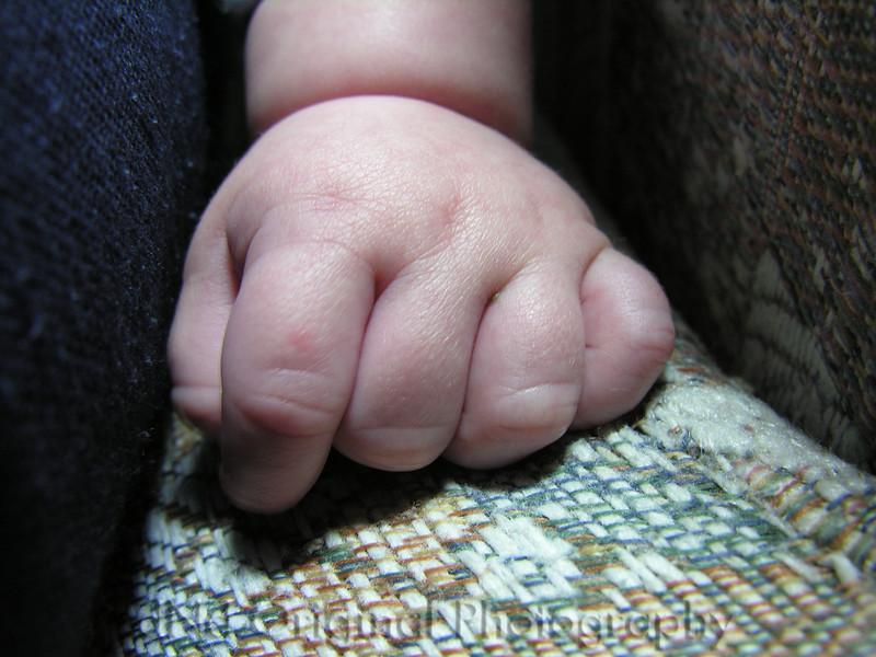 003 Nov 05 - Ian's Fist 01.JPG