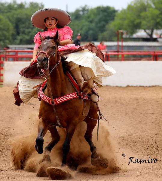 Escaramuza stopping horse IMG_9747.jpg