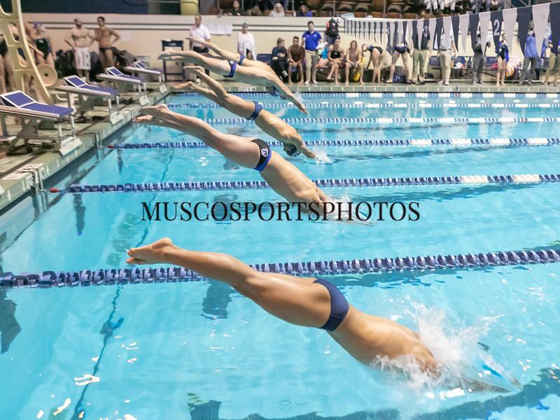 Swimming-diving vs Seton Hall_1054.jpg