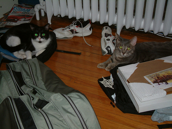 Peppy and Grisou - 2005