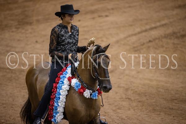 141 Youth Horsemanship Championship 7-17