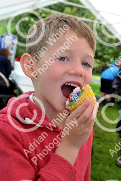 The Brecon Beacons National Park open invitation to join in its 60th Anniversary celebrations at Party in the Park at Craig-y-nos Country Park.  Jacob Norris-Malin aged 7 enjoys a self decorated cup cake in the big Marquee.