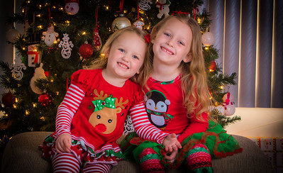 Charlotte and Lexi's Christmas pictures 2017