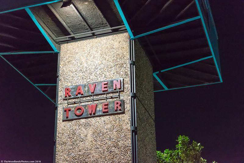 2016-12-15 Raven Tower-78.jpg