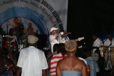 2015 Southern Maryland Wine, Jazz, R&B and Funk Festival - We Are One Tribute X-Perience Band