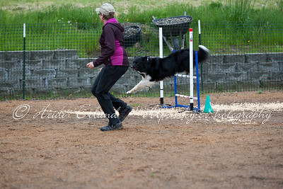 BLAST ASCA - Jumpers R2 Novice - Sunday 05/20/12