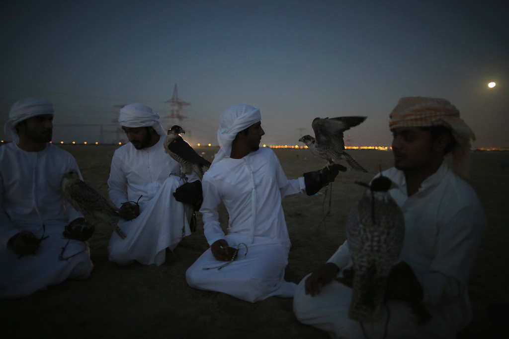 . Emirati men sit and talk with their falcons after an evening training the birds on February 3, 2015 in Abu Dhabi, United Arab Emirates. (Photo by Dan Kitwood/Getty Images)