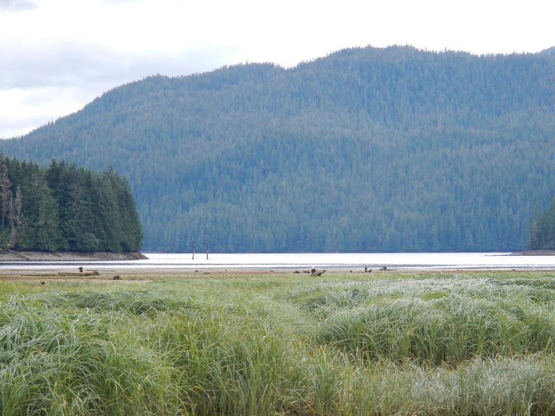 Alaska-227.jpg