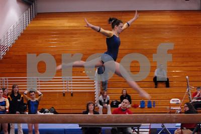 Ithaca College Gymnastics 1/17/09