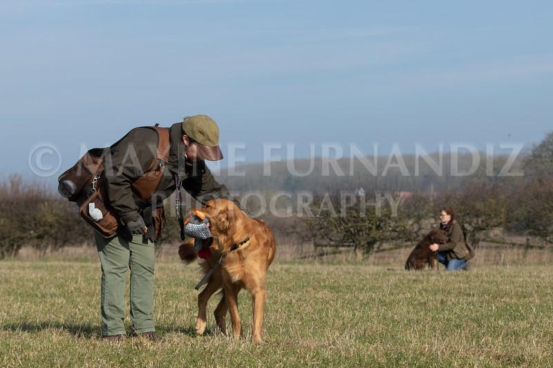 Dog Training Novice GD Feb2019-5758.jpg