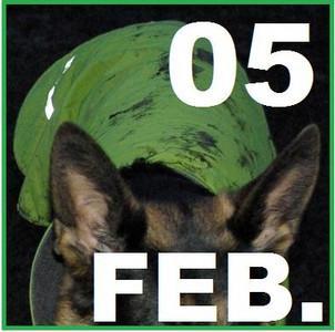 05 FEBRUARY