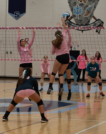 Dig Pink and Teal 2018