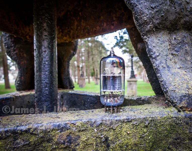 Vacuum Tube Lost in the Park 4
