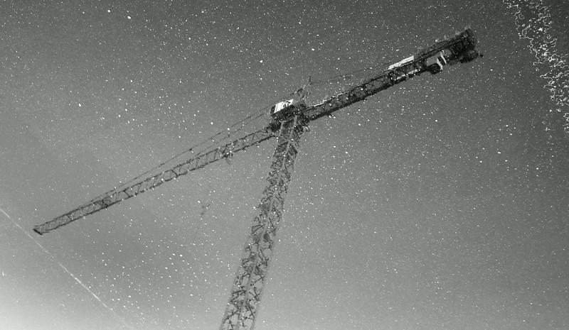 rain crane.jpg