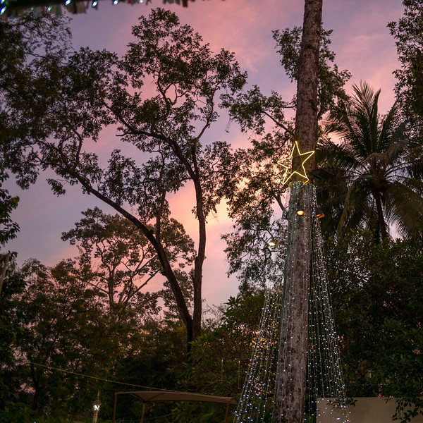Low angle view of column decorated with lights, Krong Siem Reap, Siem Reap, Cambodia