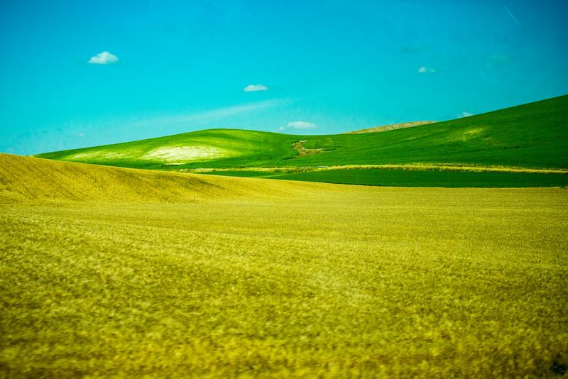 Countryside near Cordoba