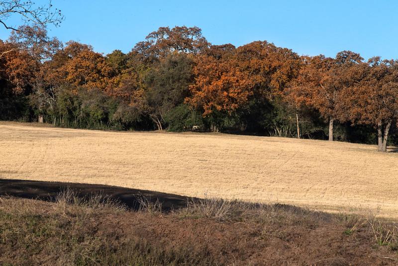 Ranch010115_8.JPG