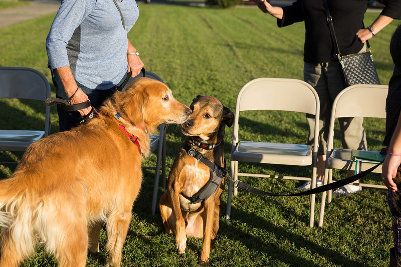 Blessing of the animals 10-3-2017 (53).jpg