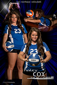 Poster Volleyball 2017-18