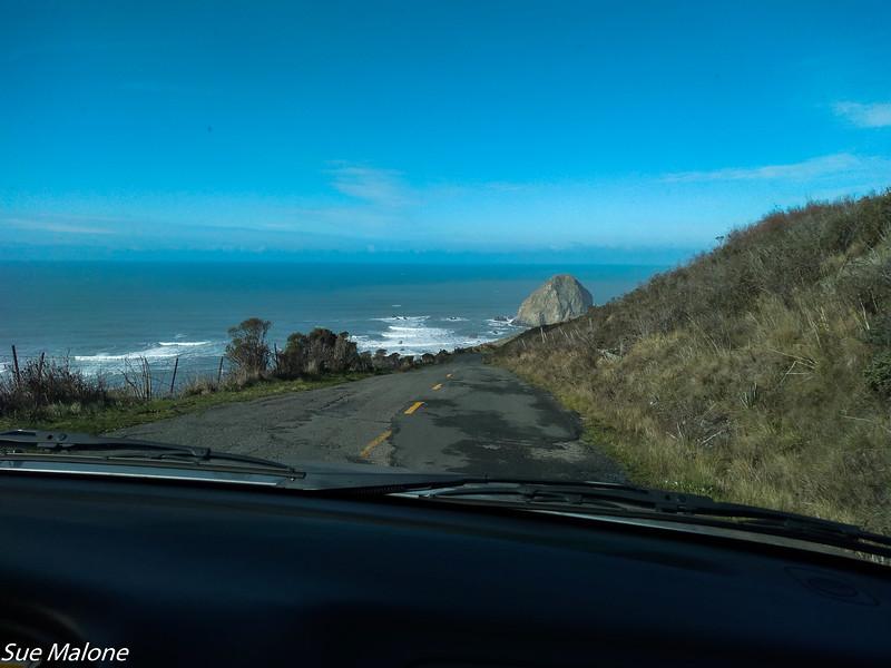 02-16-2016 Lost Coast from Deb-14.jpg