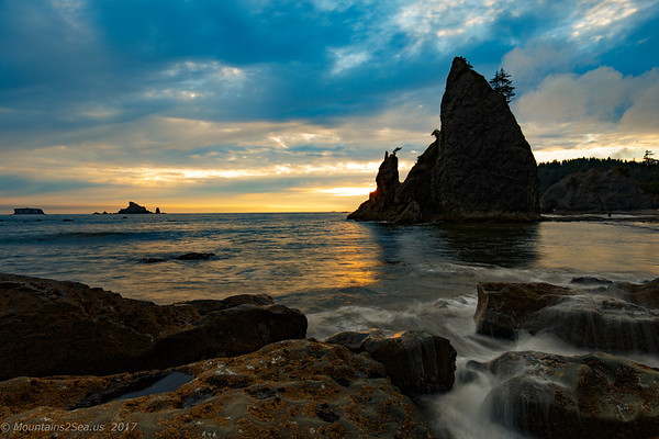 2017 Olympic National Park