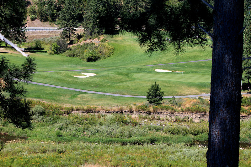 #8 Green and #2 Fairway, The Creek at Qualchan GC,  Spokane, Wa