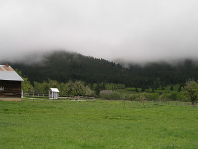 Montana 2004- misty shots