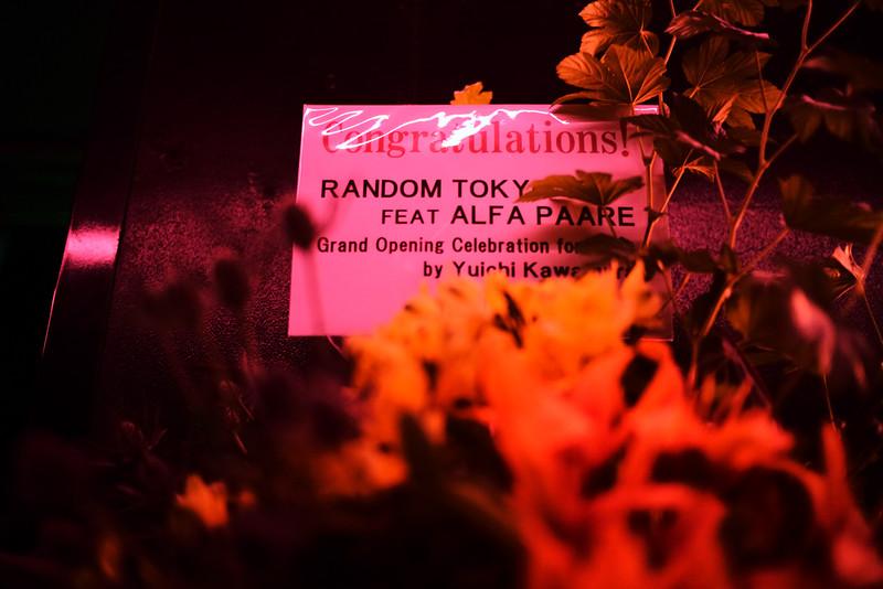 RANDOM5-34.jpg
