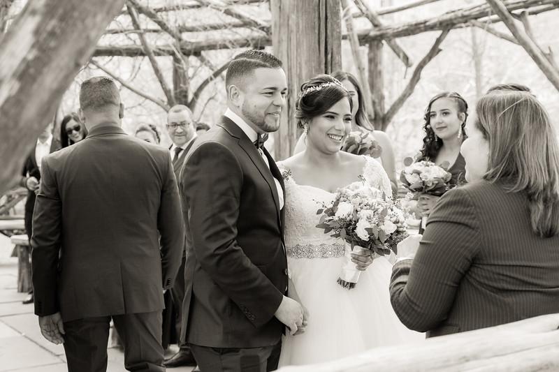 Central Park Wedding - Ariel e Idelina-30.jpg