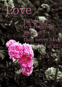 Danae's Photo with quotes