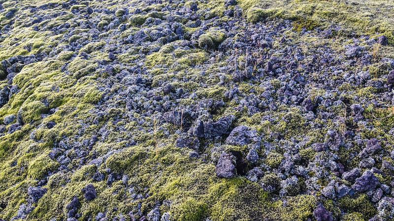 Iceland_2015_10_08_16_46_56.jpg
