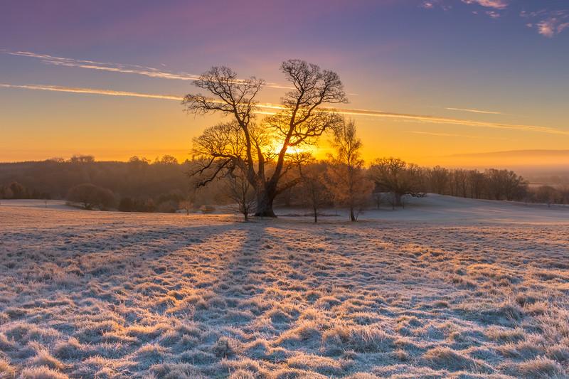 Frost glow