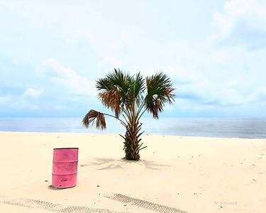 The pink barrel