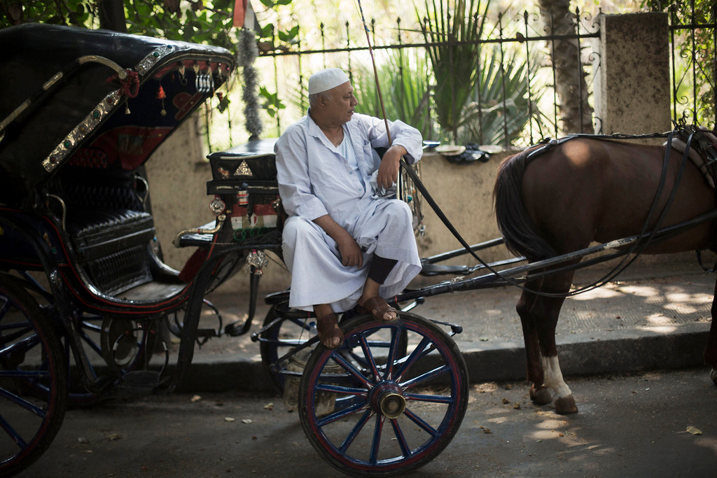 . An Egyptian man sits on his horse-drawn cart in the Zamalek district in Cairo, Egypt, Tuesday, Aug. 27, 2013.  The chairman of the Egyptian Airports Co. says some flights are arriving nearly empty to Egypt and that passenger traffic in the past week has fallen by half. In a statement released Monday, the chairman said Egypt will likely see an even steeper decline in the number of visitors by next month. A number of airlines have canceled their flights entirely, but Nasr did not disclose how many. (AP Photo/Manu Brabo)