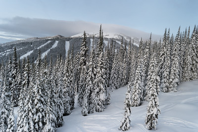 Beauty of Snow on the Slopes