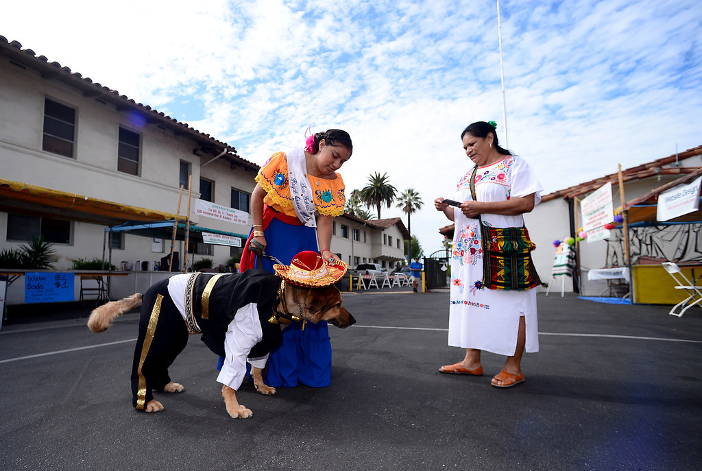 . The 2013 San Gabriel Mission Queen Francella Fierro, 17,   and her mom Melita Resendiz prepare to enter her dog Lou, dressed as a Mariachi, into the pet costume contest during their 242nd Annual La Fiesta de San Gabriel Saturday, August 31, 2013 at the San Gabriel Mission. The 10-year-old German Shepherd Rottweiler mix also received a blessing during the Blessing of the Animals by Father Lambert Okere. The fiesta runs through Sunday. (Photo by Sarah Reingewirtz/Pasadena Star-News)