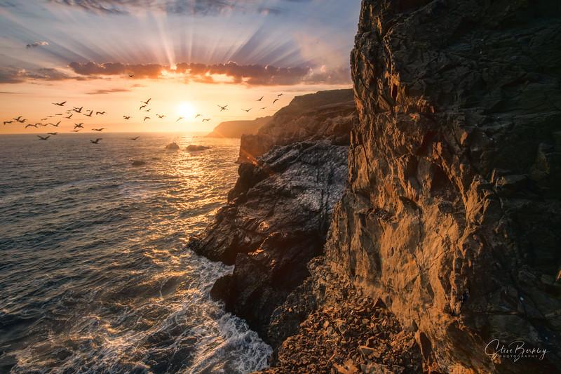 Marin Headlands V