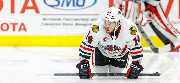 11-25-15 IceHogs vs. Rampage
