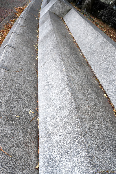 Cement Lines