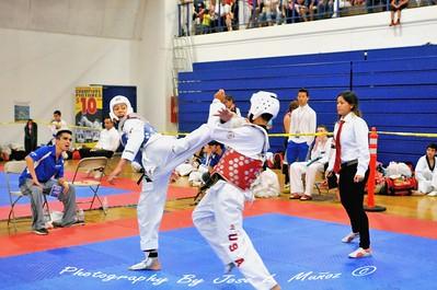 2015-06-06 Tae Kwon Do - Arizona Open Championship