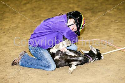 Goat Tying