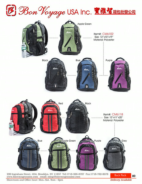 BackPack p80-X2.jpg