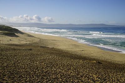 Marina Dunes 2016