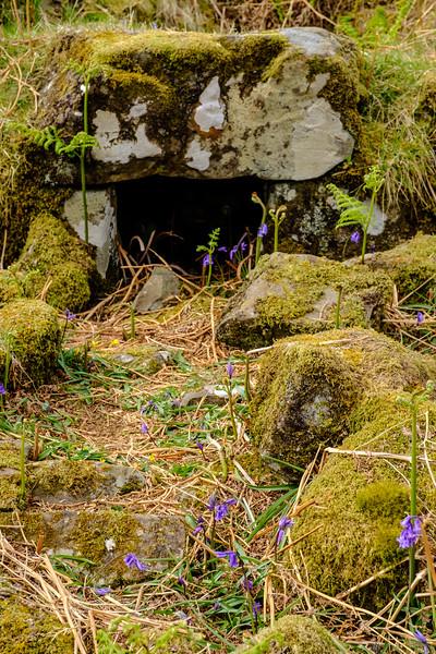 20190506 Isle of Skye 412.jpg
