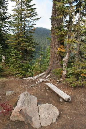 Mt Rainier NP weekend