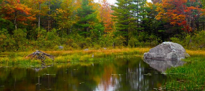 Beaver Pond & Rock Lincoln, VT  2014