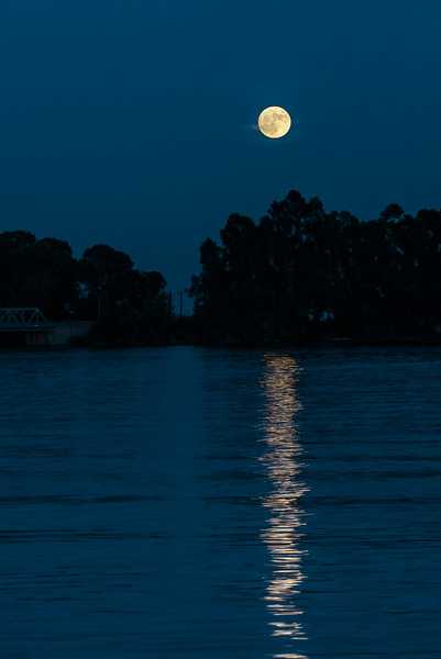 Super Moon 5.jpg