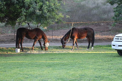 2009-11-07-08 Moorpark Reenactment