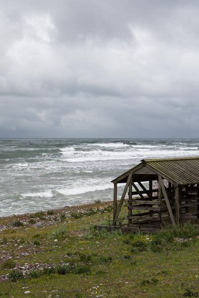 Sweden, Gotland, Lilla Karlsö